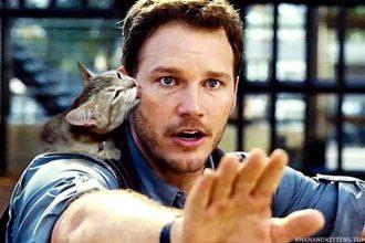 Jurassic Cat : image 1