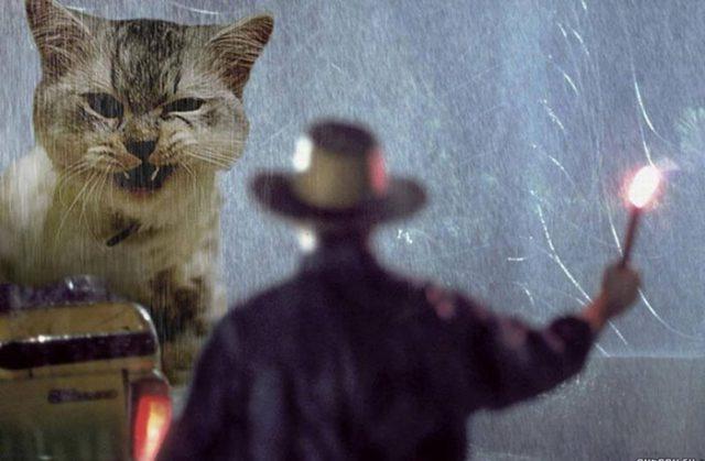 Jurassic Cat : image 2