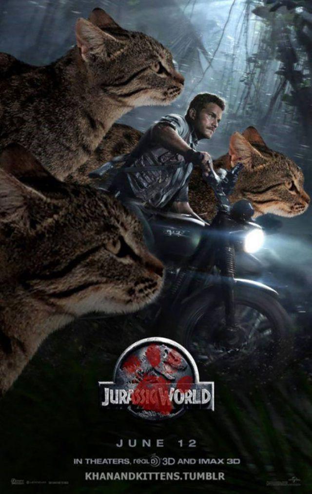 Jurassic Cat : image 5