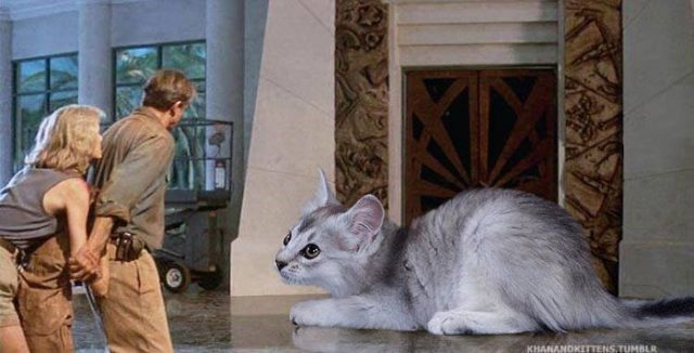 Jurassic Cat : image 8