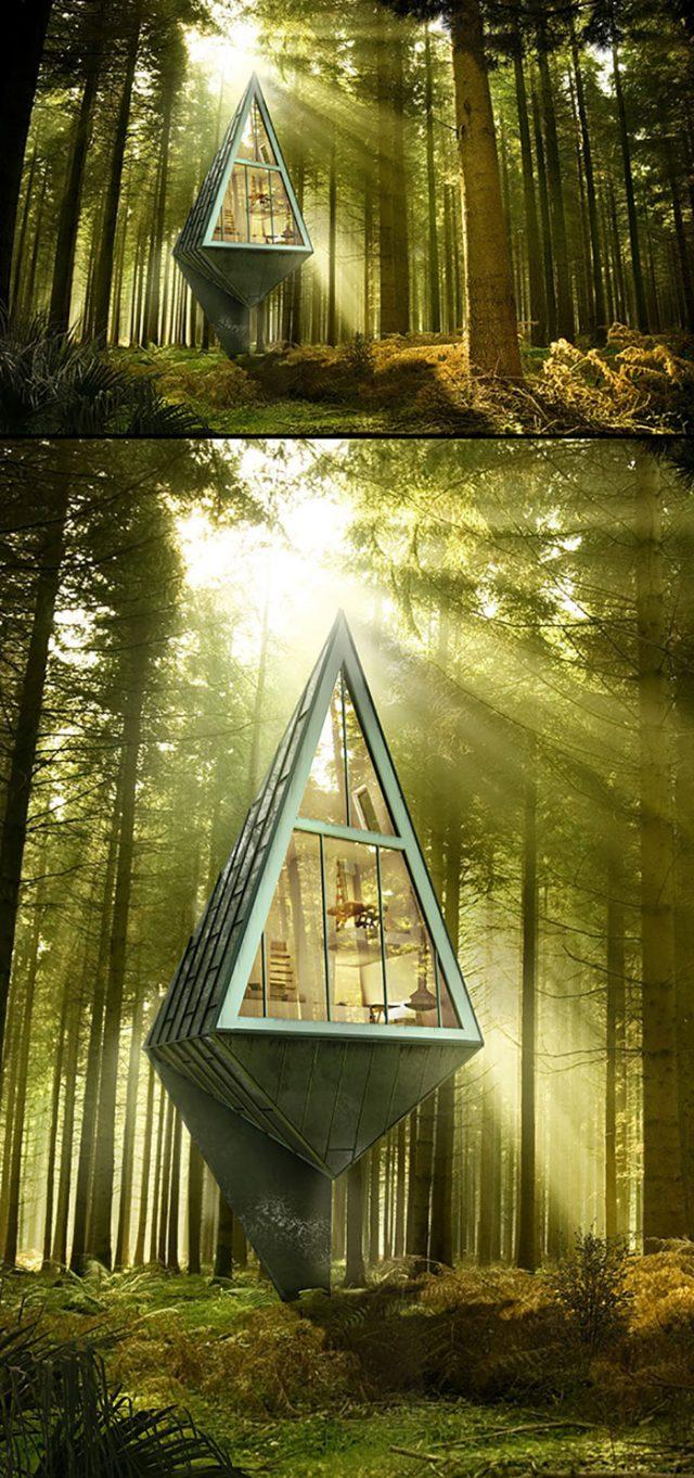 Maisons Arbres : image 4