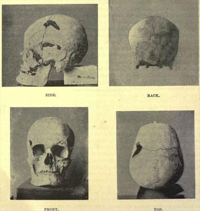 Crâne Géant Bis