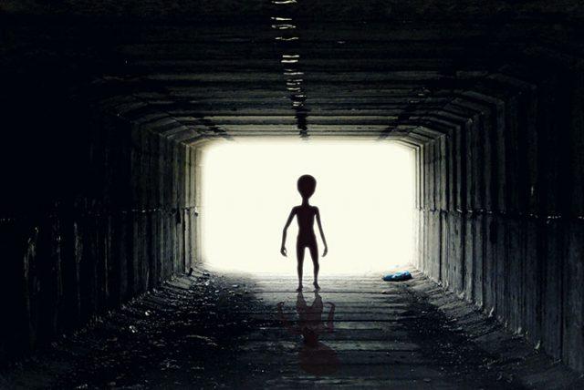 100 000 $ de récompense pour qui prouvera l'existence d'une vie extraterrestre sur Terre