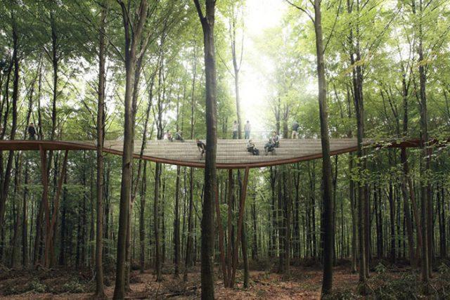 Camp Adventure Treetop Experience : image 3