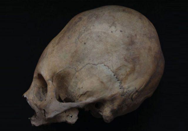 Crâne Pérou