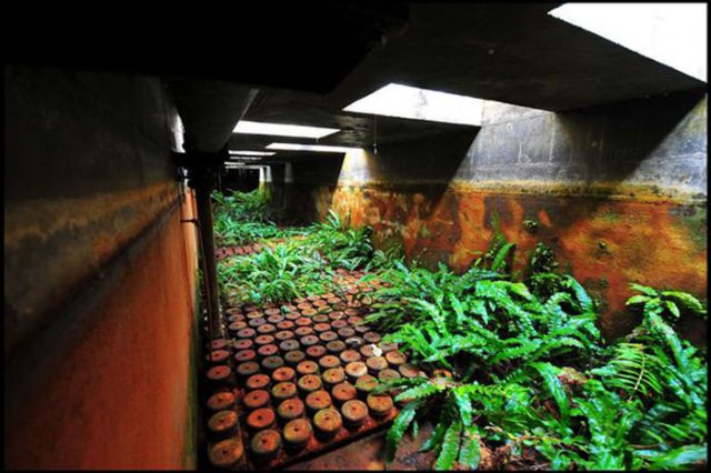 bunker-3