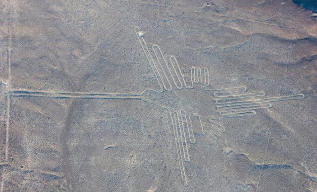 datant de l'âge utilisant des fossiles