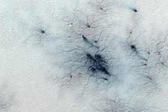 Araignées Mars