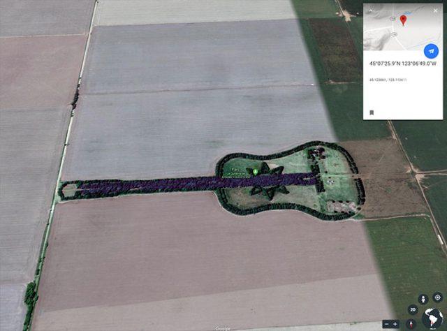 La forêt en forme de guitare