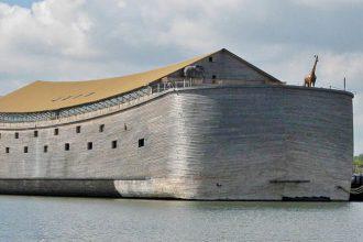 Arche Noé : image 1