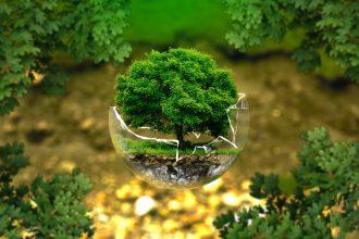 Un plan de 100 milliards de dollars par an pour sauver la Terre