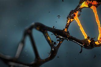 Le CRISPR utilisé dans un traitement contre le cancer aux Etats-Unis