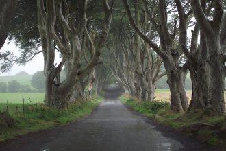 Game of Thrones dark Hedges
