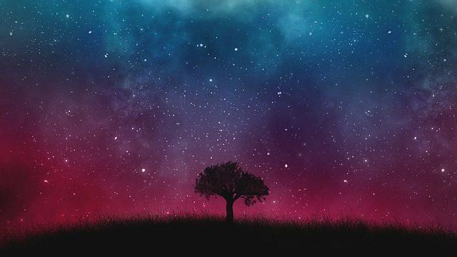 Une galaxie dans le ciel nocturne
