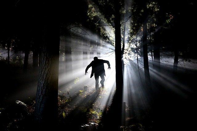 Un Vampire courant en pleine forêt