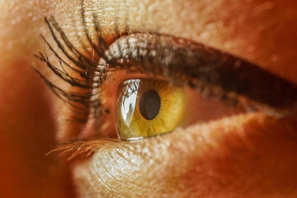La lumière et le son pour lutter contre Alzheimer ?
