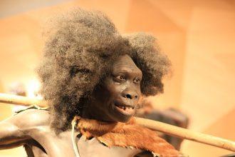 L'Homme de Néanderthal