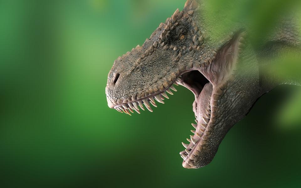 Voici le Tralkasaurus cuyi, un lointain parent du T-Rex découvert en Argentine