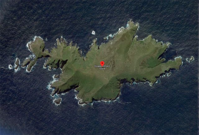 Disappointment Island, une destination assez particulière