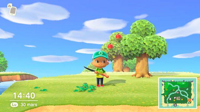 Désherber n'est sans doute pas l'activité la plus transcendante dans Animal Crossing New Horizons, mais elle peut rapporter gros