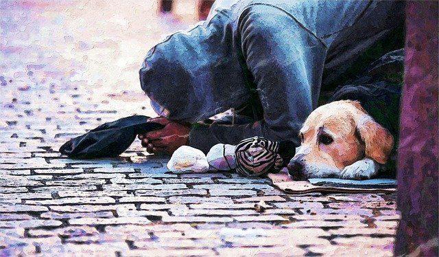 La photo d'un sans abri