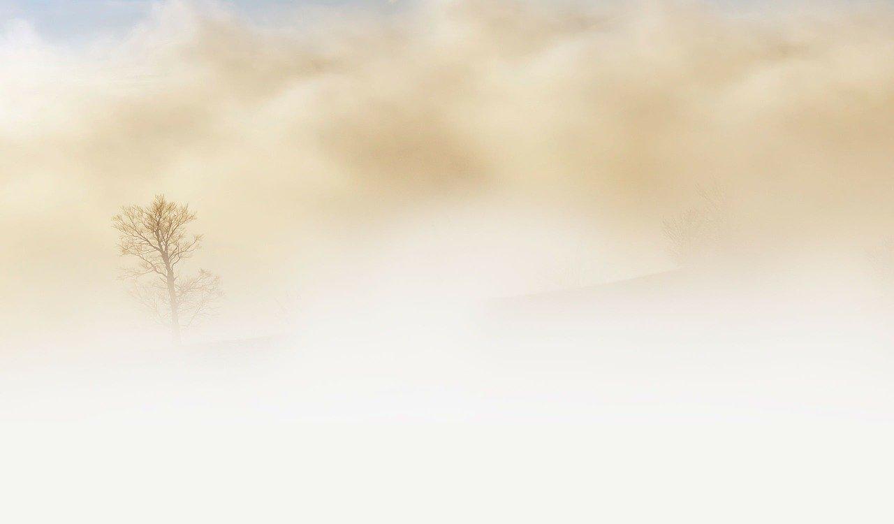 Quand le brouillard envahit les plaines