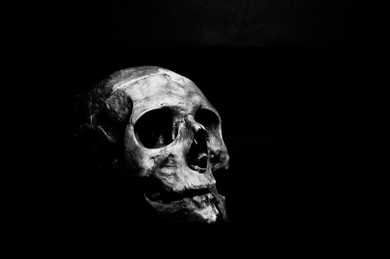 Un crâne humain dans la pénombre