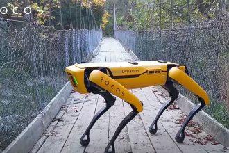 Le Spot, de Boston Dynamics
