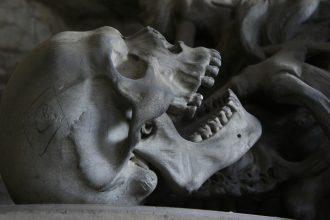 Du nouveau concernant notre ancêtre l'Homo erectus