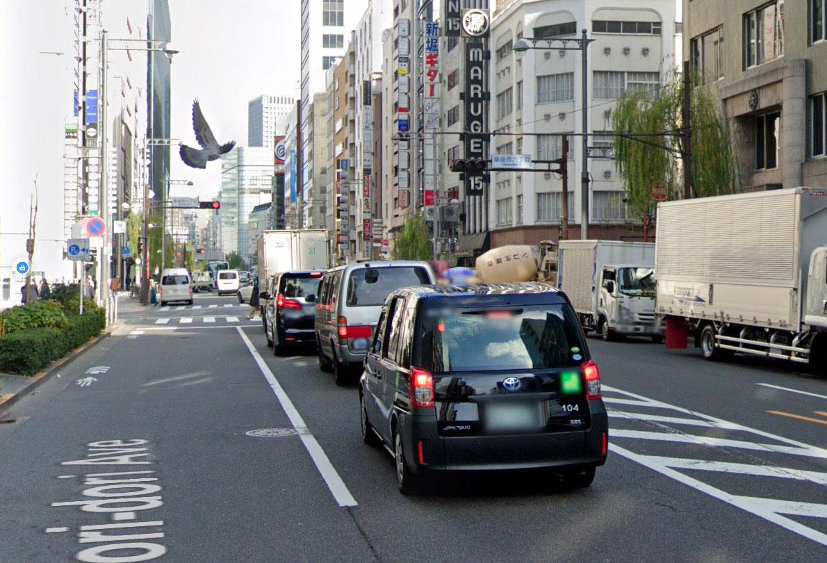 Quand un pigeon se retrouve dans Google Street View