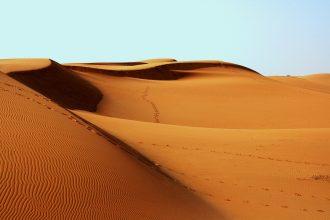 Des empreintes laissées sur les dunes d'un désert