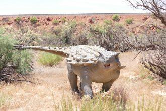 Un ankylosaure