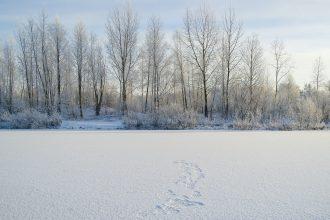 La surface gelée d'un lac en Sibérie