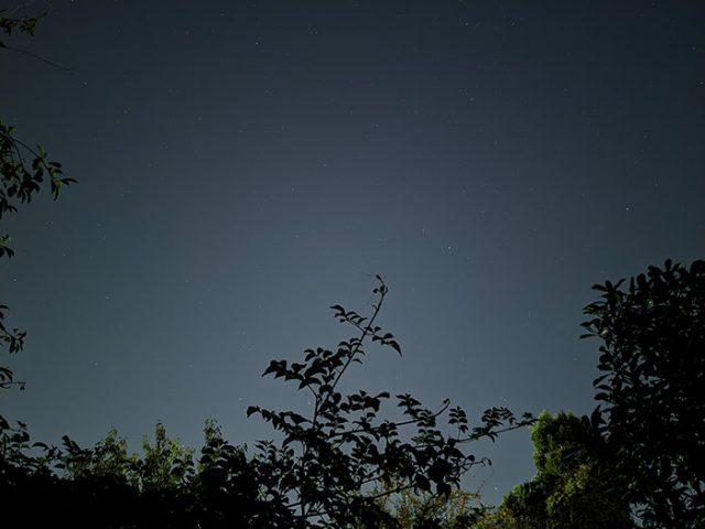 PXL_20200921_193520522.NIGHT