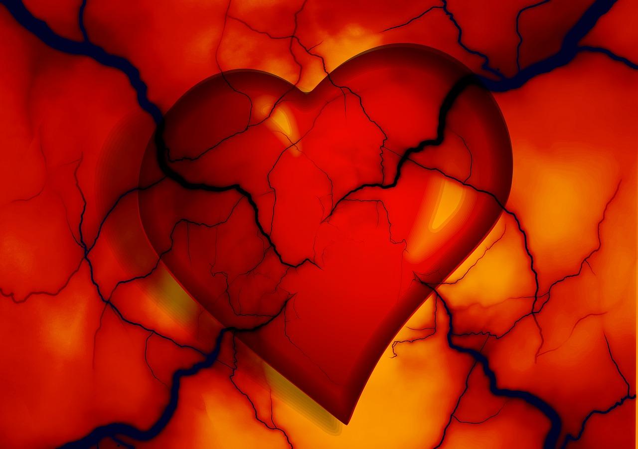 UNe représentation artistique d'un cœur