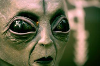 La photo d'un alien