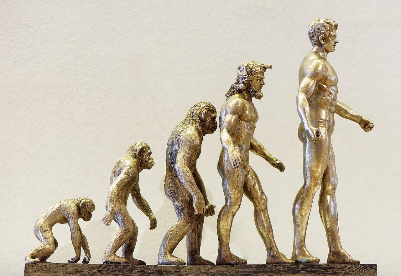 L'évolution en une statuette