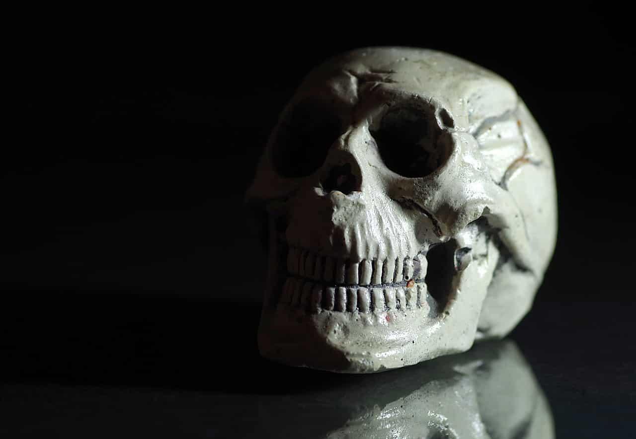 Un crâne posé sur une table