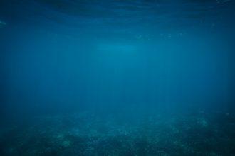 La photo des profondeurs d'un océan