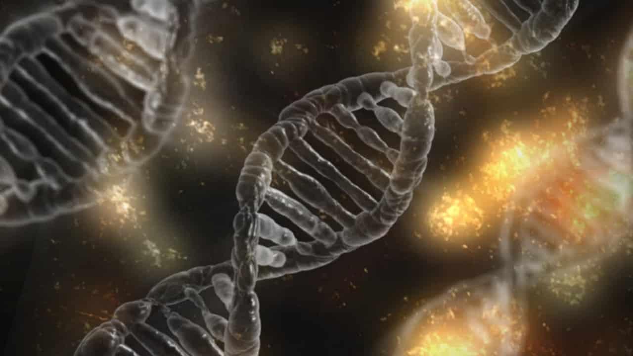 Une image montrant des gènes