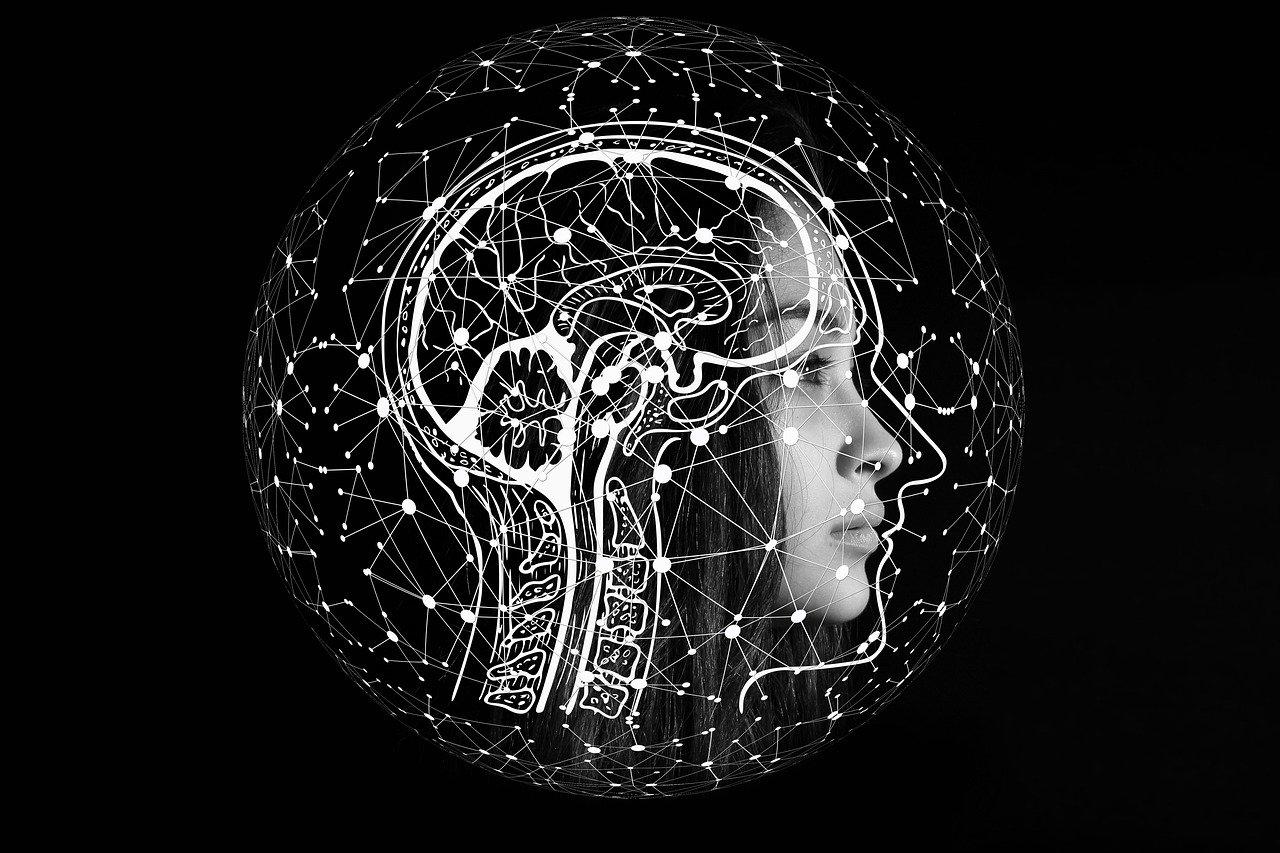 Une photo représentant le cerveau d'une femme