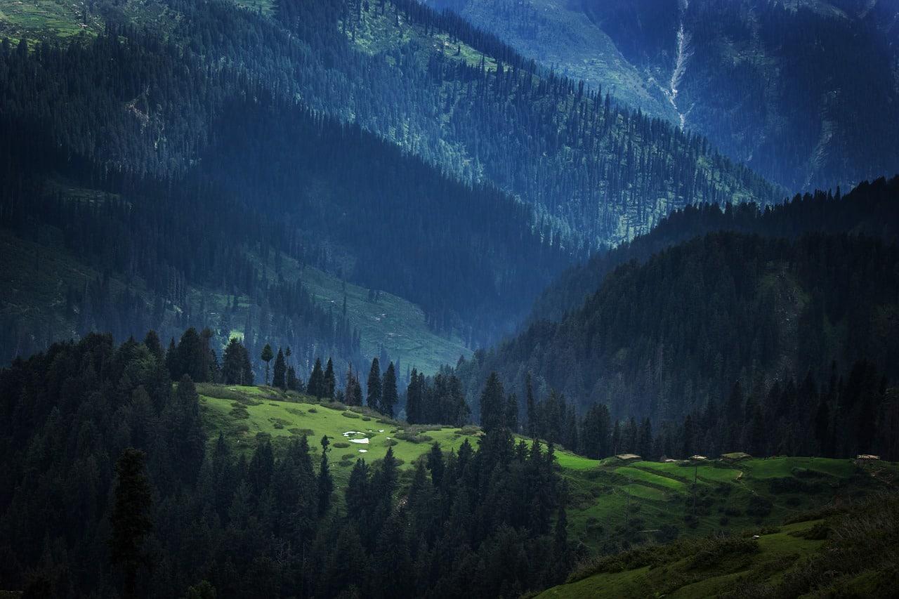 Le Pakistan compte planter 10 milliards d'arbres pour lutter contre le changement climatique