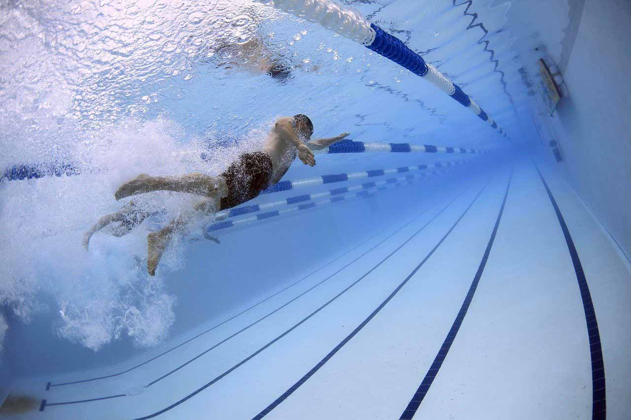 Une photo de nageurs en train de concourir pour les JO