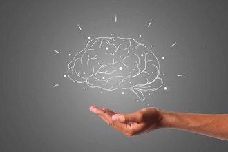 L'image d'un cerveau au-dessus d'une main