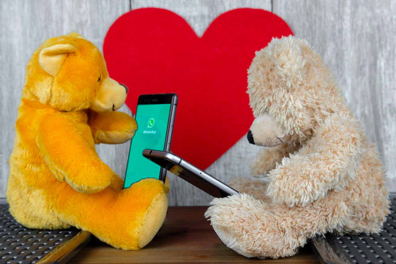 WhatsApp aussi très apprécié des ours en peluche