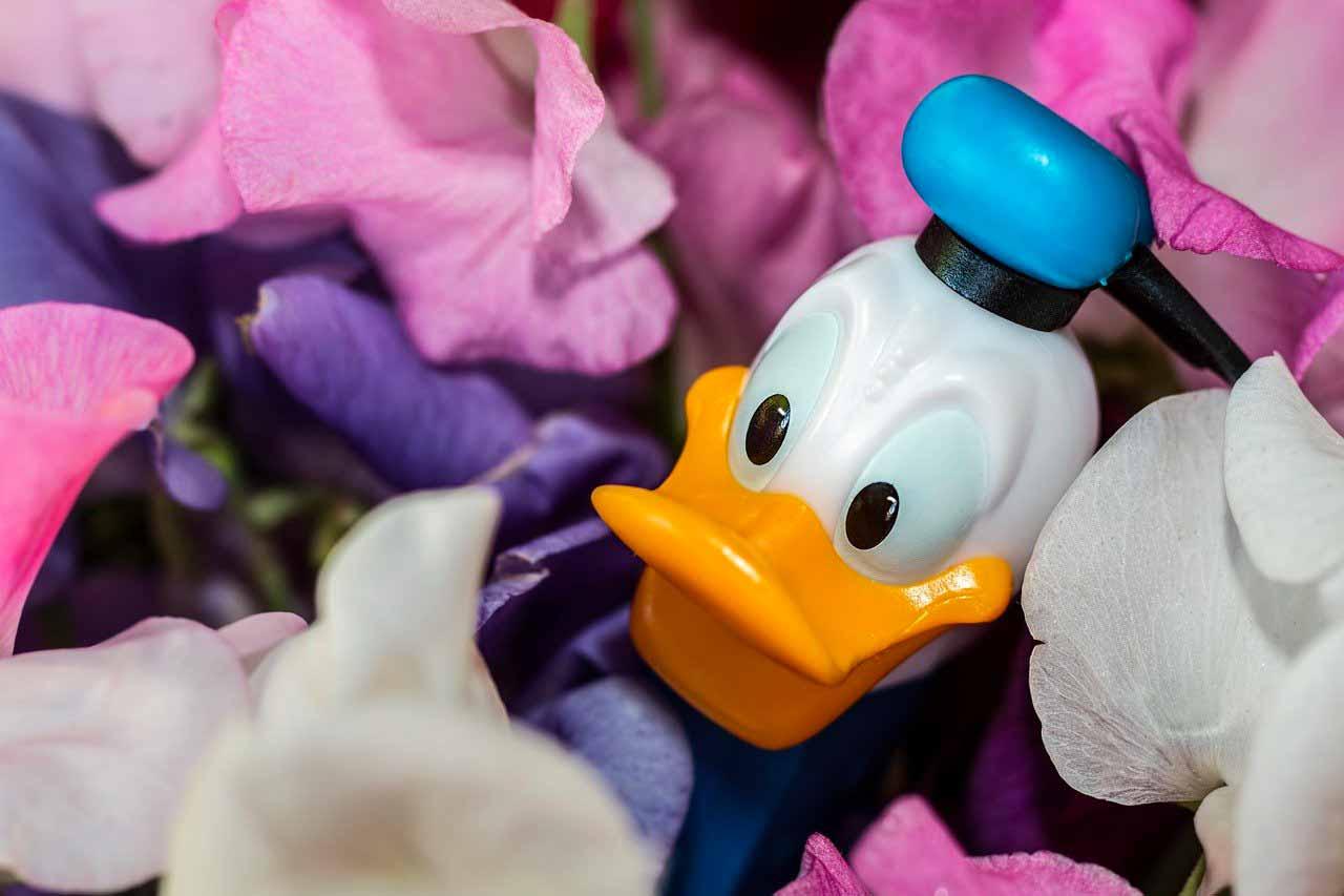 Un distributeur PEZ avec la tête de Donald Duck