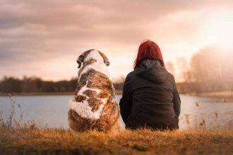 Deux amis pour la vie