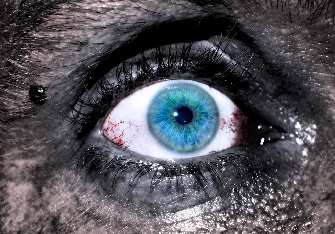 L'oeil d'un zombie