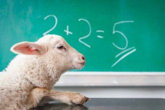 Un mouton qui ne sait pas compter