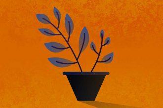 L'image stylisée d'une plante dans son pot